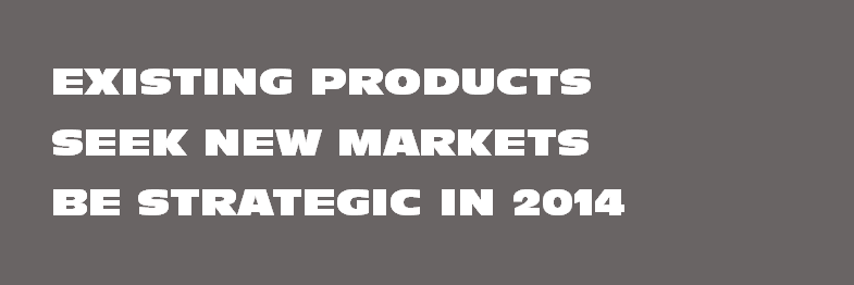 Seek New Markets with Existing Products